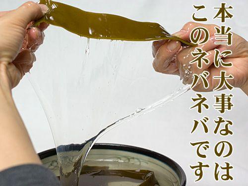 ガゴメ昆布(本体・乾燥)の粘り